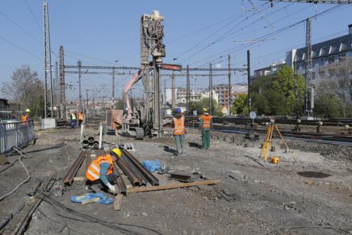 Pažení u provozované koleje v blízkosti žel. mostu přes ulici Bartoškova.